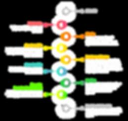 Proceso de implementación de Smartsheet