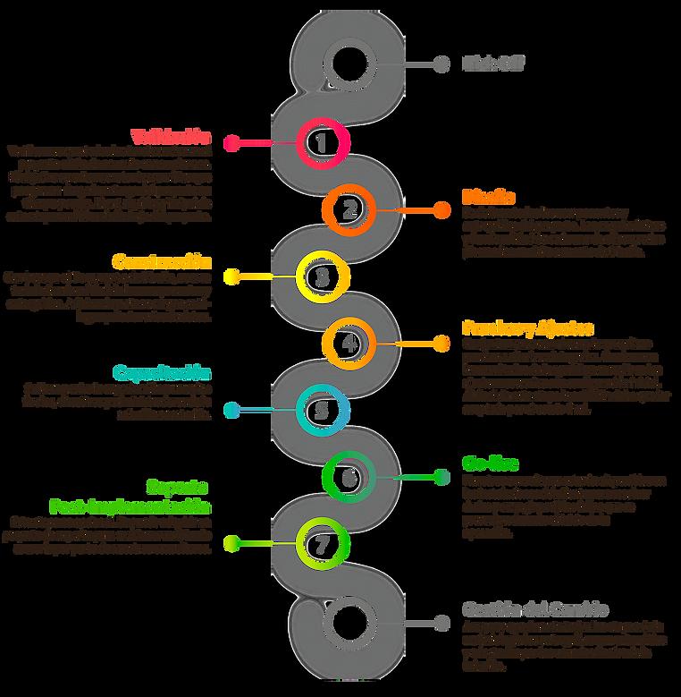 Proceso de implementación de los productos Oracle Primavera
