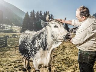 Südtirol: Das Phänomen  der Pustertaler Sprinzen
