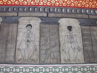 Thai Massage | Nagomi Japanese Medicine 4