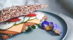 Seitan broodje gezond