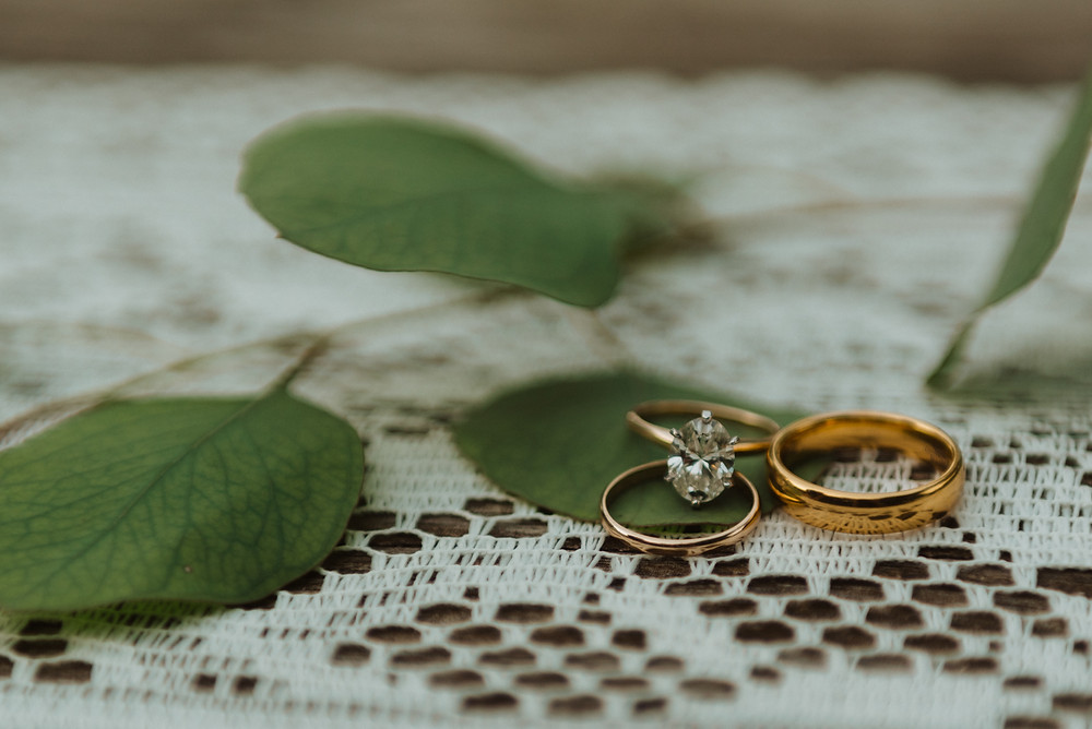 Wedding Rings, Evergreen photography