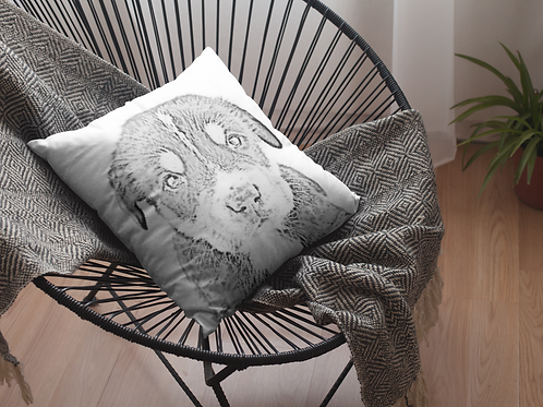 Sketch Photo  Cushion