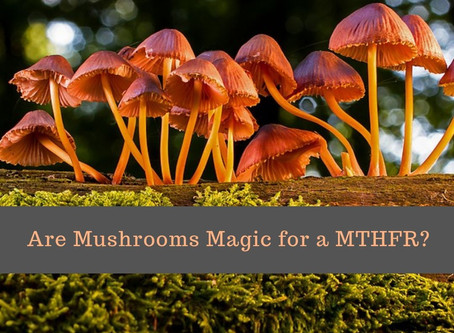Are Mushrooms Magic for a MTHFR?