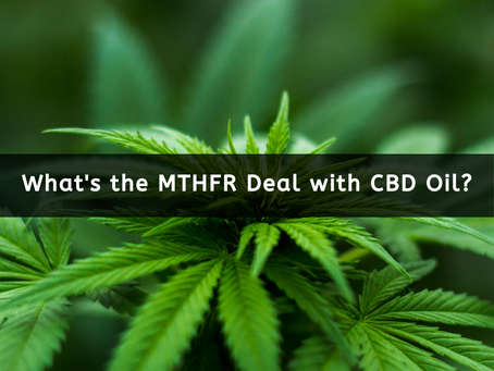 What's the MTHFR Deal with CBD Oil?