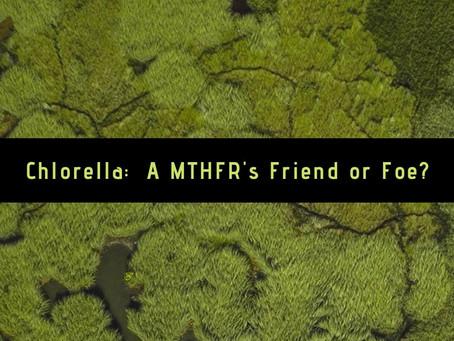 Chlorella: A MTHFR's Friend or Foe?