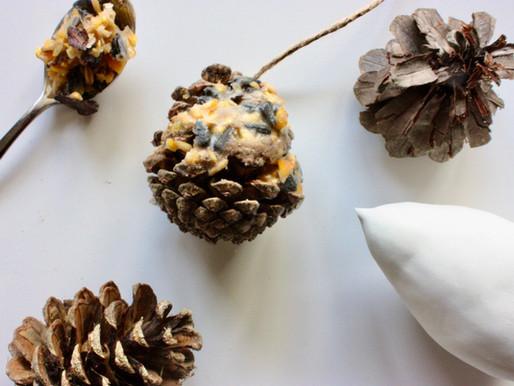 Boules de graines hivernales pour les oiseaux
