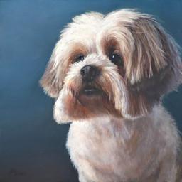 Dog Portrait 1