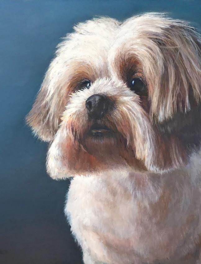 Juliana_Dog Portrait.jpg