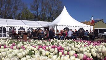 Beleef de tulpen op hettulpenbelevingsveld