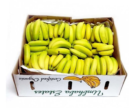 Banana Chiquita Box