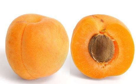 Apricot (Box)