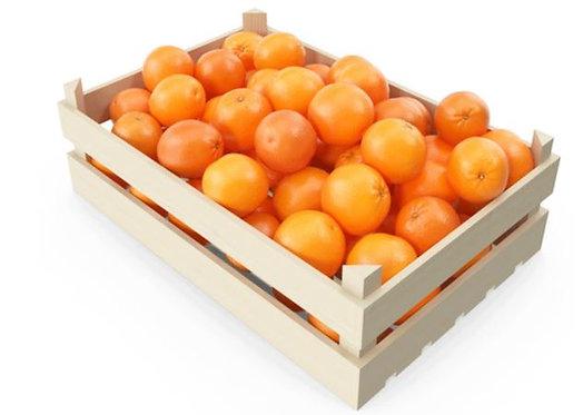 Orange Sandra Lineri 10kg