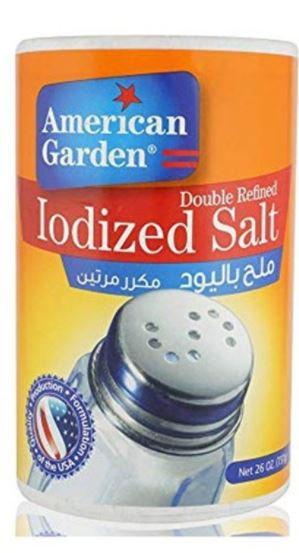 American Garden Iodized Salt Bottle 737g