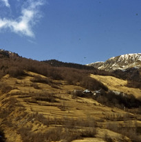 guillard 1960.jpg