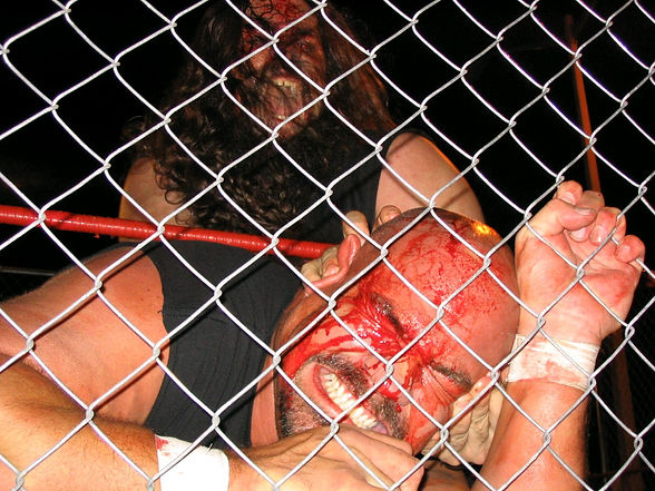 Cage Match photo by Kevin Haggard