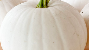 Come and Grab your Pumpkins and Gourds