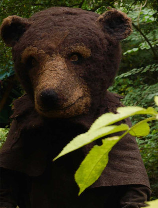 Brown bear: re-wilding Clissett Wood