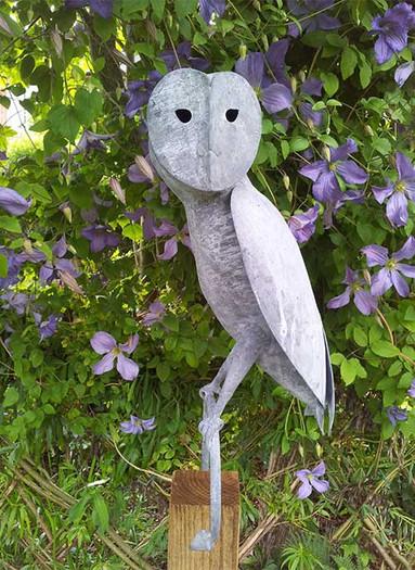 Sitting Barn Owl