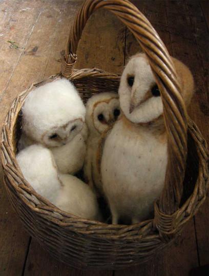 4 owls in my basket