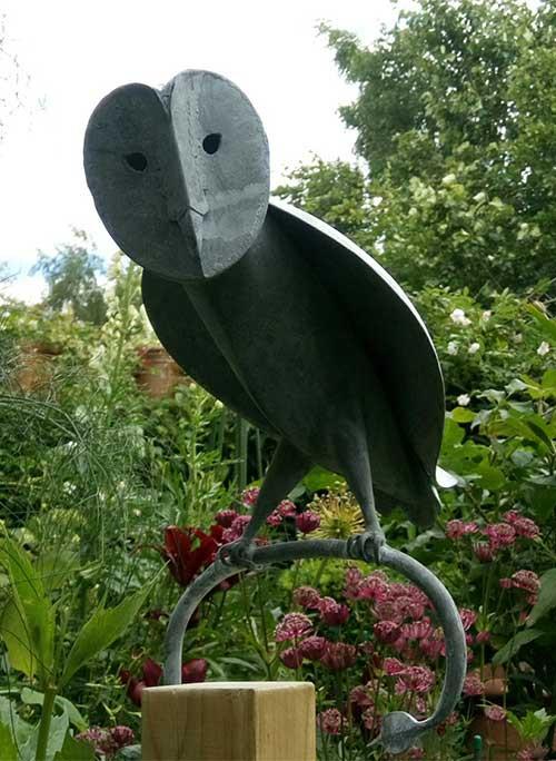 stooped Barn Owl