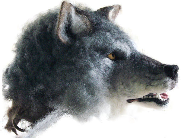 wolf-head.jpg