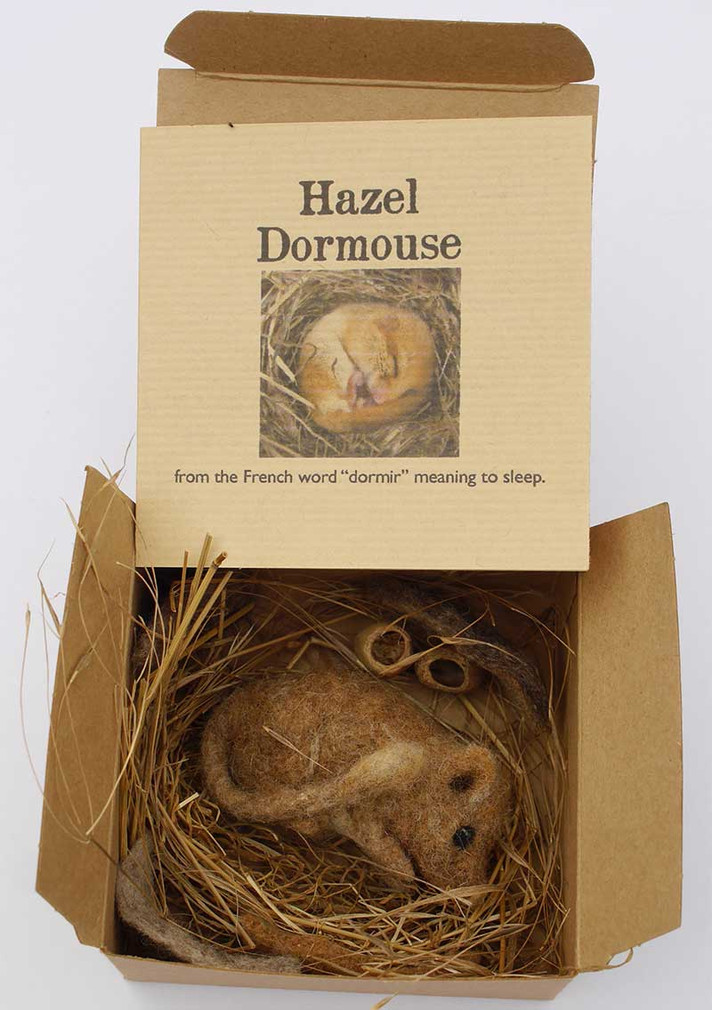 Dormouse box
