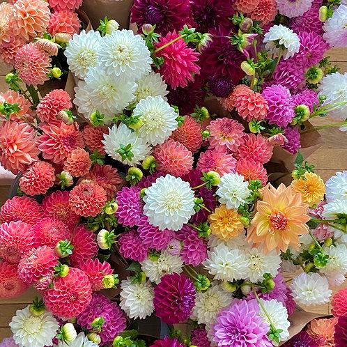 Fall Wildflower U-Pick Event!