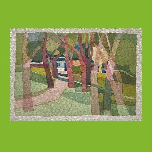kit allsopp, untitled (pathway through trees) (1980s)