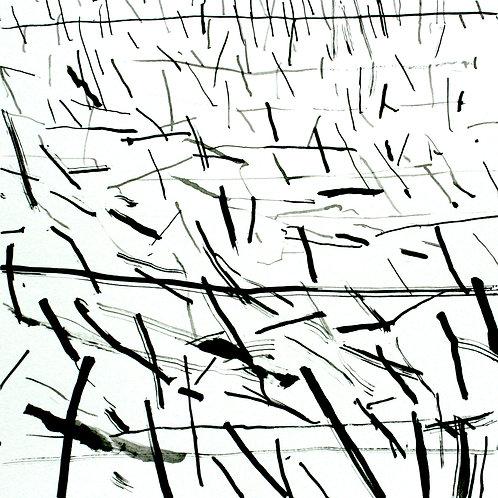 david parsons, field stalks (2017)