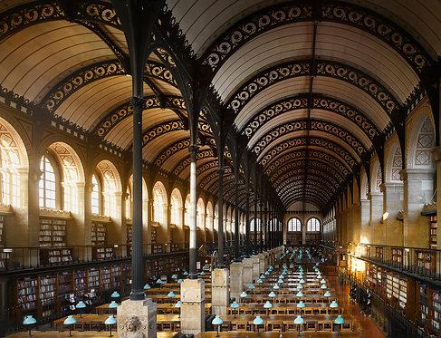 will pryce, bibliothèque sainte-geneviève, 1850, paris, france (2010)