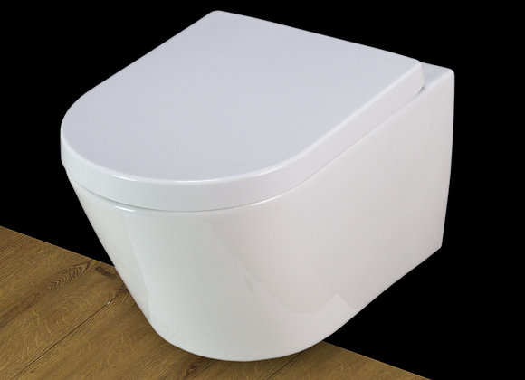 Toilet WC Wall Hung Mounted Bathroom