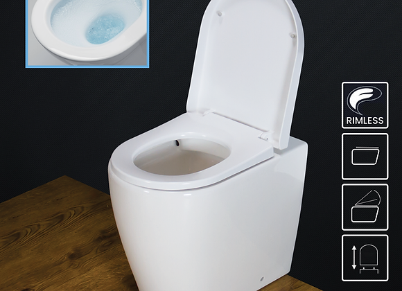 Toilet WC Back to Wall Bathroom Comfort Height Cloakroom
