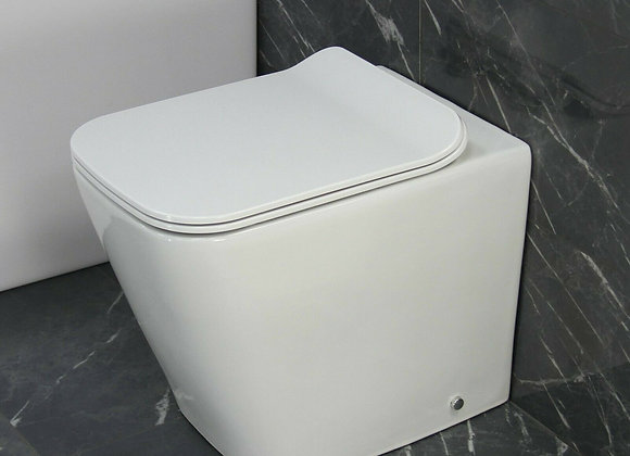 Toilet WC Back to wall Cloakroom Rimless