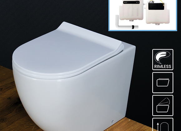 Toilet WC Back to Wall Bathroom Cloakroom Rimless