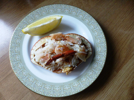Saturday 22nd February 2020 - Impatient, Ignoring the Weather and First Crabs
