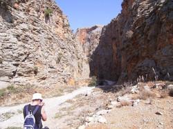 Aradhena entrance
