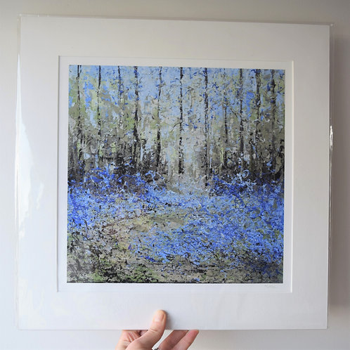 Bluebell Woods, Middleton Ilkley (12 or 16 inch)