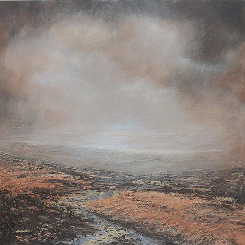 Autumn tracks - Ilkley Moor