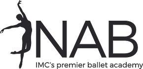 IMC_Logo-NAB-B_300.jpg