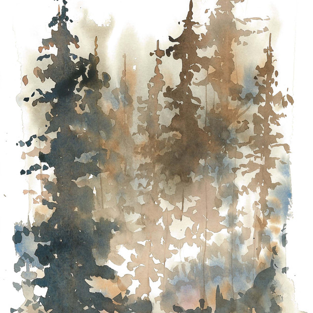 Fall Misty Trees 1.jpg
