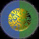 Nanopartícula Janus