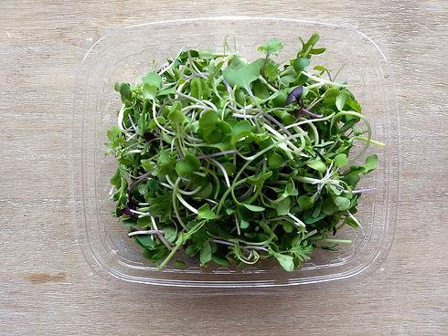 Super+Salad.jpeg