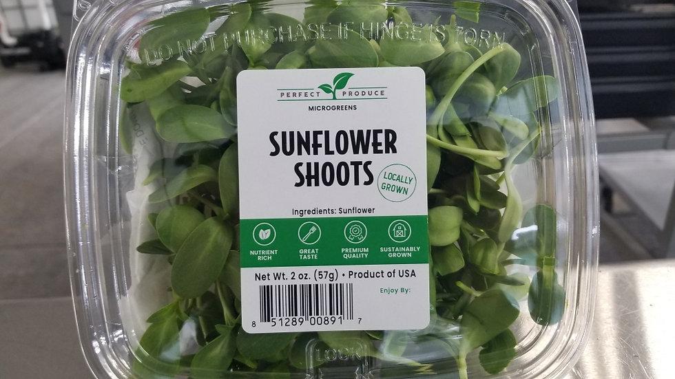 Sunflower Shoots Microgreens