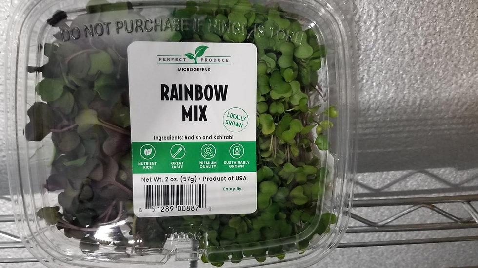 Rainbow Mix Microgreens