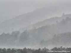 雨,霧,墨絵