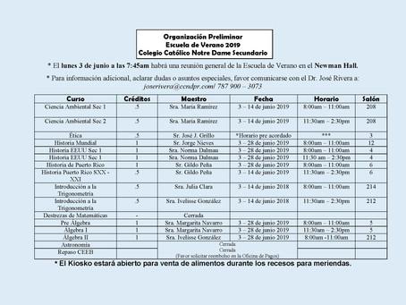 Organización Preliminar Escuela de Verano