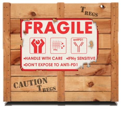 Treg fragility