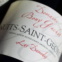 """NUITS-SAINT-GEORGES """"Les Damodes"""" 2017"""