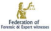 Federation Expert Witnesses Logo.png